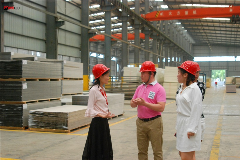 <b>Sudan Power Station Project Choose Rock Wool Sandwich Panel of BRD</b>
